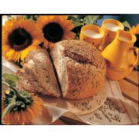Смесь для зернового хлеба Паноплюс Дарк, 15 кг.