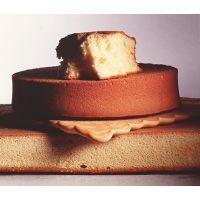 ИЗИ БИСКВИТ концентр. смесь для приготовления бисквита, 25 кг.