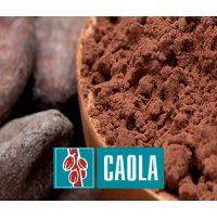 Какао-порошок CAOLA PRO (Гост) Россия, 25 кг.