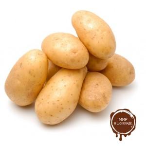Сублимированный картофель (кусочки 1-5 мм; 5-10 мм), 5 кг.