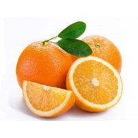 Замороженное пастеризованное пюре Апельсин, 1 кг.