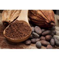 Какао-порошок для промышленной переработки (тонкий помол) 5-6% жирности, 25 кг