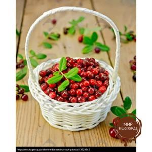 Брусника сублимация, целые ягоды, 1 кг.