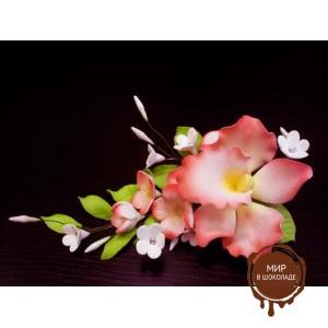 """Цветы из мастики - """"Букет орхидей"""", Красный (11176*D/p), шт."""