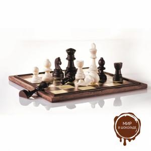 Пластиковая форма Шахматы d25/35мм h40/80мм, 11/36 гр., 20 ячеек.