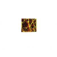 Декор фигурный темный Квадрат малый  30 х 30 мм, 630 шт