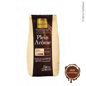 Какао-порошок Plein Arome коричневый 22-24% жирность, Cacao-Barry, 1 кг.