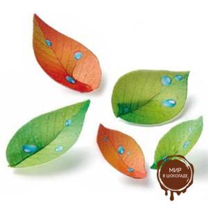 Вафельный листик Лето-осень (короб 200 шт.)