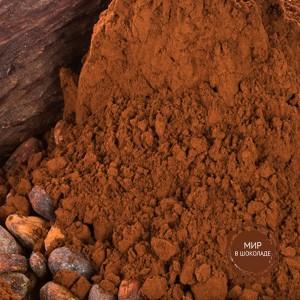 Какао-порошок 10/12, упаковка 1 кг., Италия