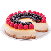 Fiorfiore Cheese Cake, сухая смесь для приготовления чизкейка, 10 кг