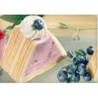 Аляска-экспресс АЭ Йогурт-Черника (AE Joghurt-Heidelbeer) - пищевой концентрат с кусочками ягод, 1 кг
