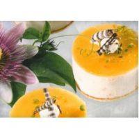 Аляска-экспресс АЭ Йогурт-маракуйя (AE Joghurt-Vanille-Maracuja) - пищевой концентрат с кусочками фруктов, 1 кг