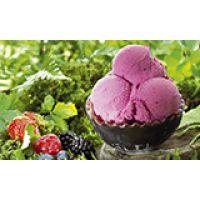Паста для мороженого Джелато лесные ягоды, ведро 3 кг.