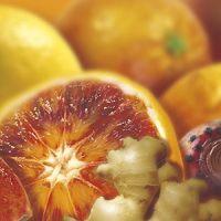 Замороженное пюре цитрусовый коктейль (красный апельсин, лимон, бергамот, цветки кактуса, имбирь) в блоке Ravifruit, 1 кг.